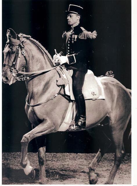 position du cavalier