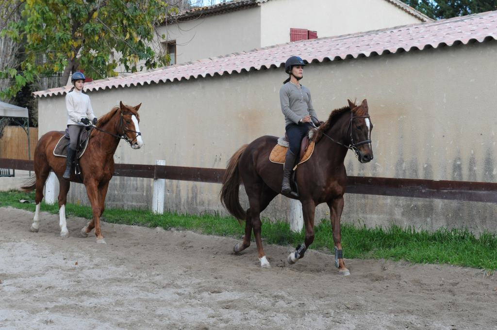 Equitation Elementaire
